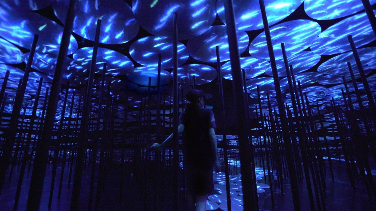 Spellbinding Moro Digital Art Museum In Tokyo